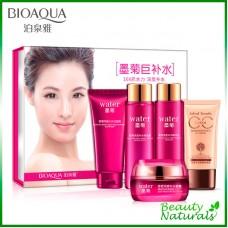 Набор косметики с хризантемой и СС кремом Bioaqua